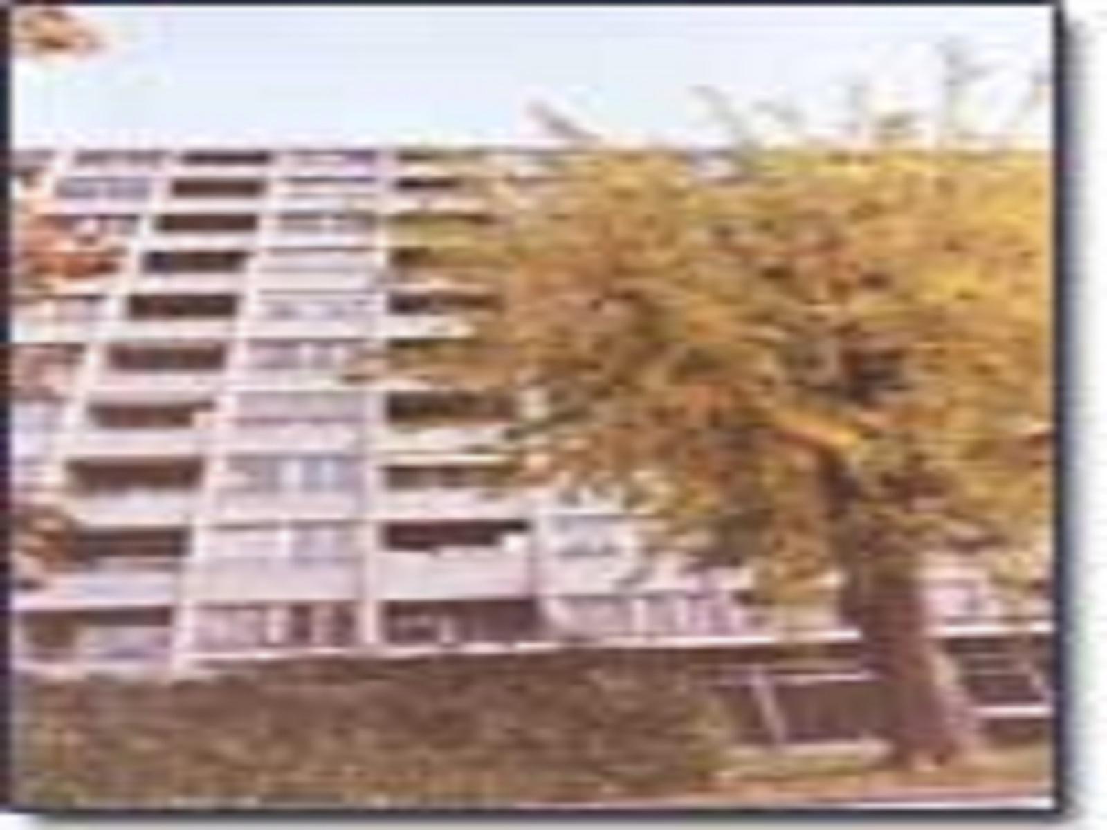 Bois-de-la-Chapelle 67